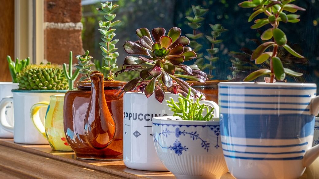 10 Home Items You Throw Out All The Time That Can Actually Be Reused