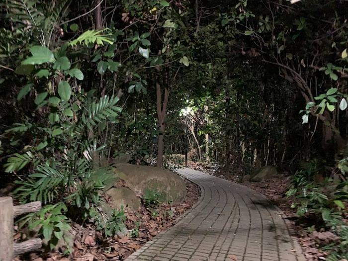 paranormal-investigation-bukit-batok-nature-park-singapore-1