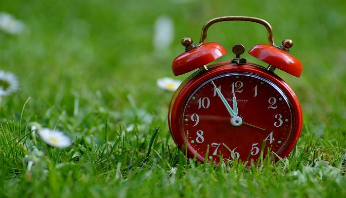 Clock on grass