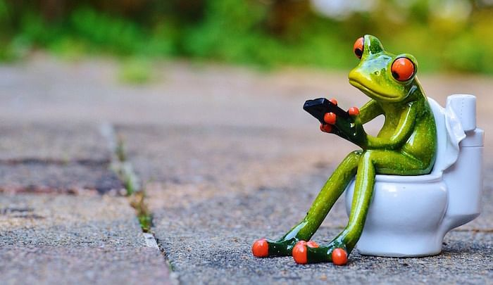 frog using a mobile device sitting on a WC