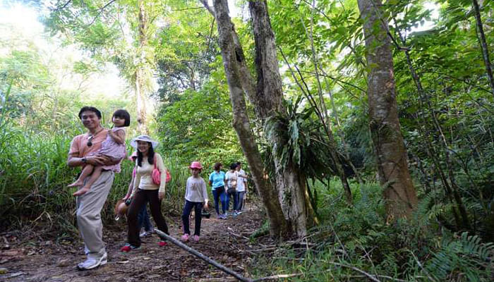 5 Nature Trails To Discover Singapore By_1