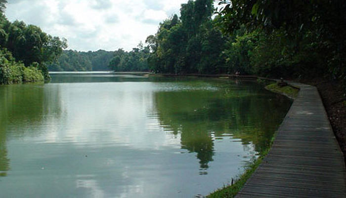 5 Nature Trails To Discover Singapore By_2