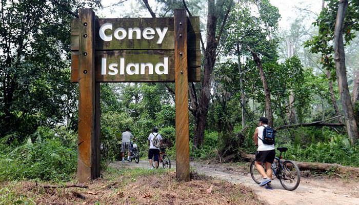 5 Nature Trails To Discover Singapore By_4