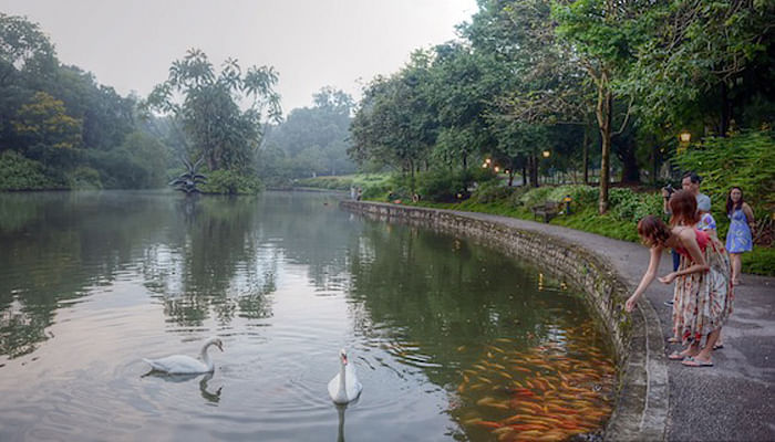5 Spots in Botanic Gardens You Probably Didn't Know About_The Dell