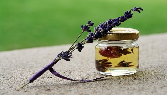 The One Thing You Should Be Using To Repel Mosquitoes_Lavender