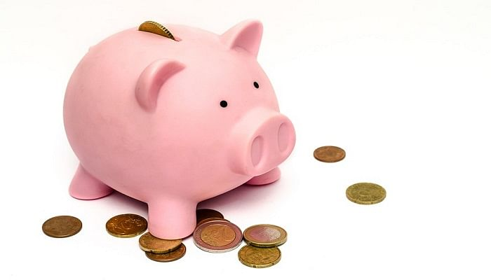 Are You And Your Partner Financially Compatible_PiggyBank