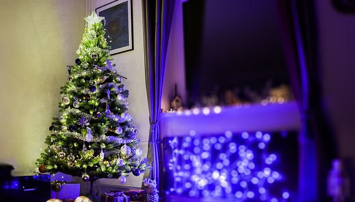 heres-where-to-get-a-real-christmas-tree-for-your-home-plus-buying-tips-3