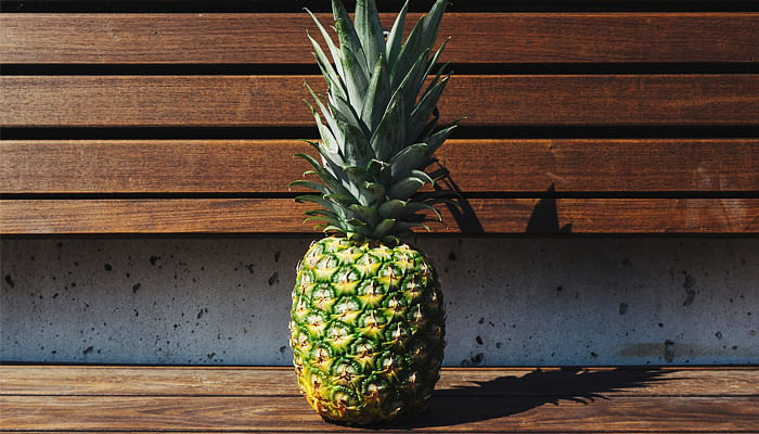 pineapple on a bench