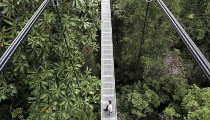 The-Best-And-Most-Fun-Hiking-Trails-To-Try-In-Singapore_5