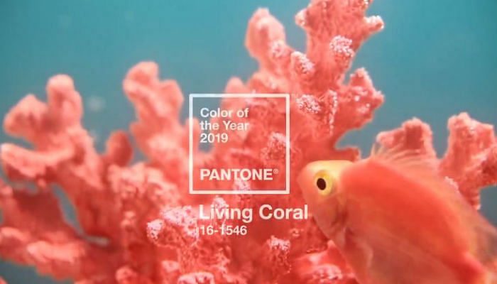 Pantone Finally Created A Colour Of The Year THat Will Look Great On Your Skin